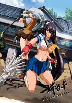 Ikkitousen Dragon Destiny